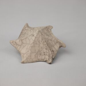 Caracola de rakú desnudo